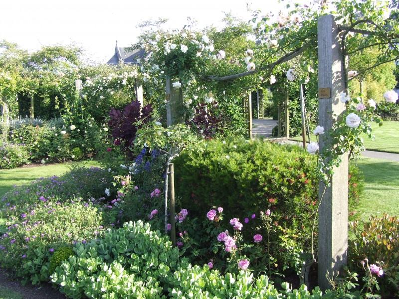 eric lequertier cr ation de jardin roseraie saint malo. Black Bedroom Furniture Sets. Home Design Ideas