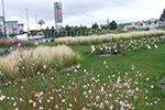 Jardins d'entreprises et collectivités