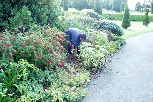 Eric lequertier entretien jardins espaces verts for Entretien jardin saint yvi